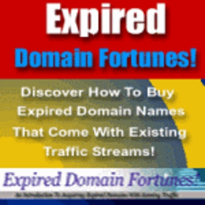 Product picture Expired Domain Fortunes - Make Money from Expired Domains